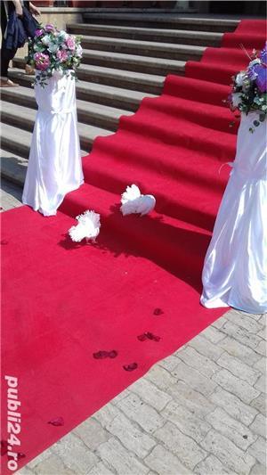 Porumbei pentru  Nunti Timisoara - imagine 6