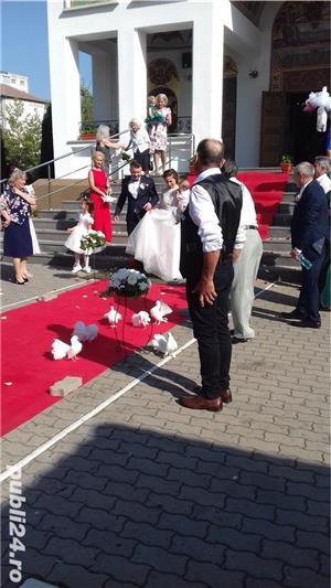 Porumbei pentru  Nunti Timisoara - imagine 5