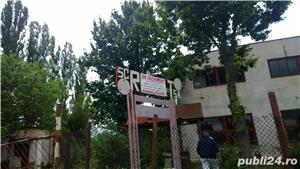 teren Giurgiu intravilan 34033 mp proprietar - imagine 6