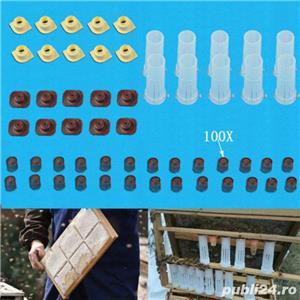 Sistem de producere a reginelor de albine  - imagine 2