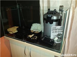 Vand acvariu volum 105 litri - imagine 2