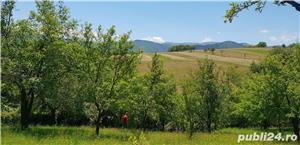Teren 3300 mp. situat in Sibiu-Rasinari zona Tropinii Noi. - imagine 2