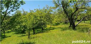 Teren 3300 mp. situat in Sibiu-Rasinari zona Tropinii Noi. - imagine 1