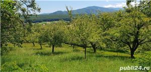 Teren 3300 mp. situat in Sibiu-Rasinari zona Tropinii Noi. - imagine 3