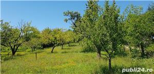 Teren 3300 mp. situat in Sibiu-Rasinari zona Tropinii Noi. - imagine 7