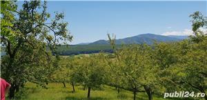 Teren 3300 mp. situat in Sibiu-Rasinari zona Tropinii Noi. - imagine 5