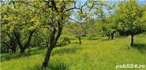 Teren 3300 mp. situat in Sibiu-Rasinari zona Tropinii Noi. - imagine 6