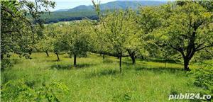 Teren 3300 mp. situat in Sibiu-Rasinari zona Tropinii Noi. - imagine 4