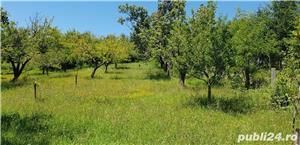 Teren 3300 mp. situat in Sibiu-Rasinari zona Tropinii Noi. - imagine 8
