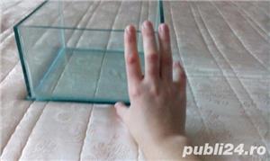 acvariu dimensiune mica - imagine 2