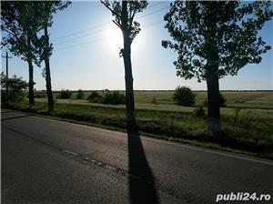 Gruiu ,Snagov , Sat Lipia  - imagine 6