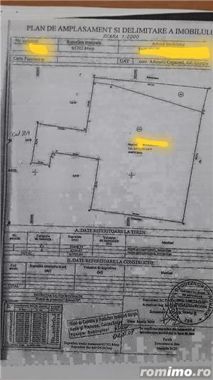 Vanzare 17 ha Adunatii-Copaceni Giurgiu Stradal la DN5 - imagine 3