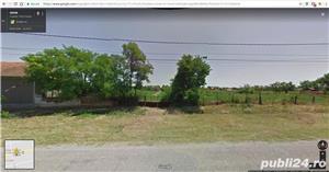 Teren 2929mp teren intravilan cu loc de casa, in comuna Livezile, judetul Timis - imagine 1