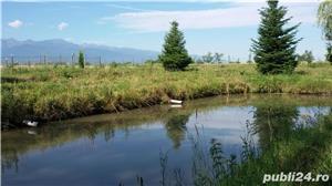Vand teren la Sasciori, jud.Brasov - 5 bazine piscicultura, curent electric - imagine 2