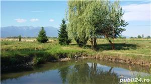 Vand teren la Sasciori, jud.Brasov - 5 bazine piscicultura, curent electric - imagine 1
