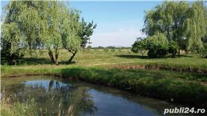 Vand teren la Sasciori, jud.Brasov - 5 bazine piscicultura, curent electric - imagine 5