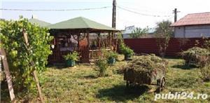 vând casa de vacanta Giurgiu - imagine 7