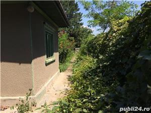 Curte + Casa de vanzare la Dudesti - Braila - imagine 5