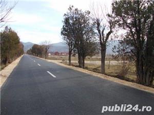 P.F.Arpasu de sus-Albota Sibiu 6000mp  teren intravilan utilitati,munte,rau,padure,strada asfaltata - imagine 9