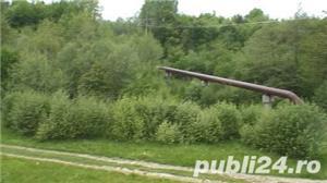 P.F.Arpasu de sus-Albota Sibiu 6000mp  teren intravilan utilitati,munte,rau,padure,strada asfaltata - imagine 8