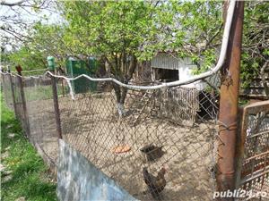 Vanzare casa P+M si teren 1350 mp, Letca Noua, jud. Giurgiu - imagine 9