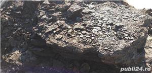 carbuni de vanzare - imagine 2