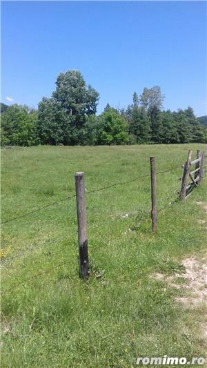 parcele teren intravilan de 1650 mp pentru case vacanta  Arges  - imagine 5