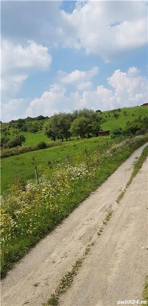 Vand teren intravilan 10500 mp. situat in Cisnadie pe soseaua Selimbarului - imagine 4