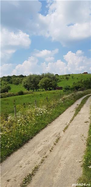 Vand teren intravilan 10500 mp. situat in Cisnadie pe soseaua Selimbarului - imagine 3