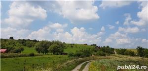 Vand teren intravilan 10500 mp. situat in Cisnadie pe soseaua Selimbarului - imagine 2