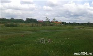 Teren pentru casa in Grabat, com Lenauheim 662 mp 6600 Euro, negociabil - imagine 4