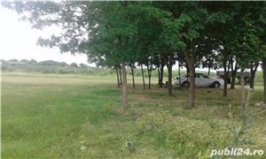 Teren pentru casa in Grabat, com Lenauheim 662 mp 6600 Euro, negociabil - imagine 8