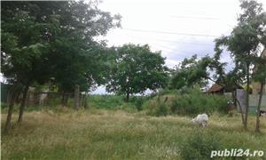Teren pentru casa in Grabat, com Lenauheim 662 mp 6600 Euro, negociabil - imagine 7