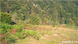 Vand teren la Coada Lacului Lesu - Valea Iadului - imagine 6
