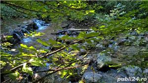 Vand teren la Coada Lacului Lesu - Valea Iadului - imagine 9