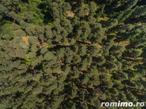 FILMARE CU DRONA! In Poiana, vila- dotari de top pt viata cu noroc!! - imagine 6