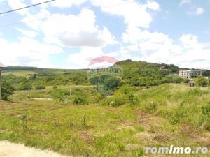 Teren  ideal pentru investitie 3734 mp.,langa Lacul Saldabagiu - imagine 9