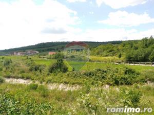 Teren  ideal pentru investitie 3734 mp.,langa Lacul Saldabagiu - imagine 11