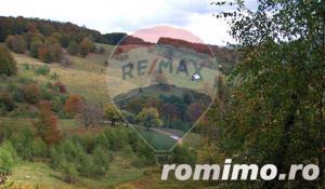 Teren Piatra Craiului 16 ha pt. sat de vacanta, pensiune, cabane. - imagine 3