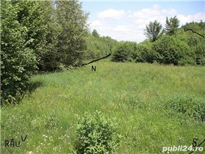 P.F.Arpasu de sus-Albota Sibiu 6000mp  teren intravilan utilitati,munte,rau,padure,strada asfaltata - imagine 2