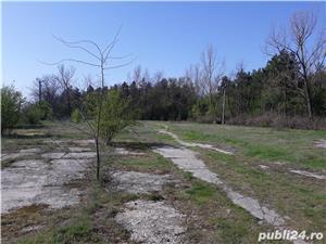 vand casa amenajabila+ teren betonat 7700 mp +hala la 30 min de Buc Comana Mihai Bravu 0744327391 - imagine 10