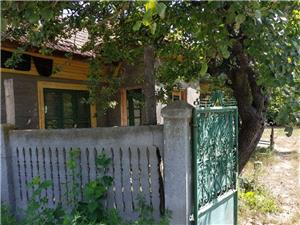 Vand casa la tara in comuna Giurgita - imagine 1