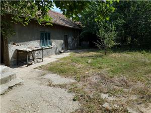 Vand casa la tara in comuna Giurgita - imagine 2