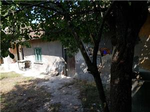 Vand casa la tara in comuna Giurgita - imagine 11