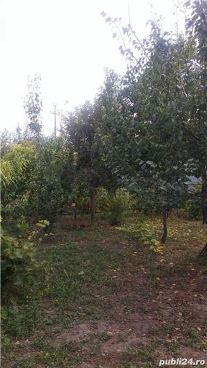 casa, teren(1044mp) - Badeana, Vaslui - imagine 16