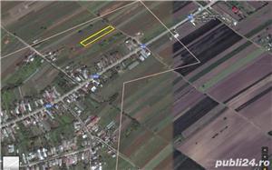 Vand doua loturi de casa in Tantava , langa Domnesti , Ilfov - imagine 1