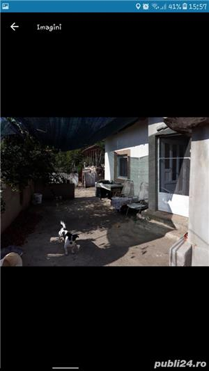 Casa de vanzare com Gostinu jud Giurgiu - imagine 6