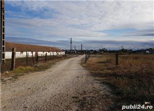 Nicolae Balcescu, teren intravilan 12.132 mp, deschidere 220ml la 2 strazi - imagine 5