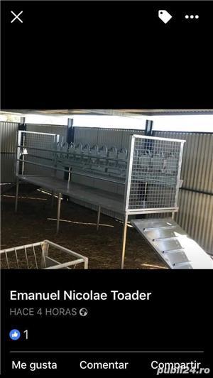 Standuri de capre si oii pentru sala de muls - imagine 4