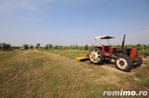 Teren 346,000 mp zona Arad , livada si teren agricol - imagine 2